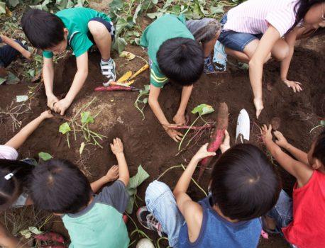 Help your volunteer group to succeed